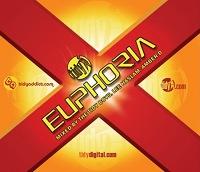 Tidy Euphoria